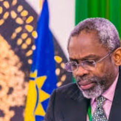 We won't allow maltreatment of Nigerians, Gbajabiamila tells Chinese envoy