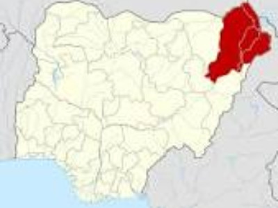 16 health workers got infected of coronavirus in Borno – Commissioner